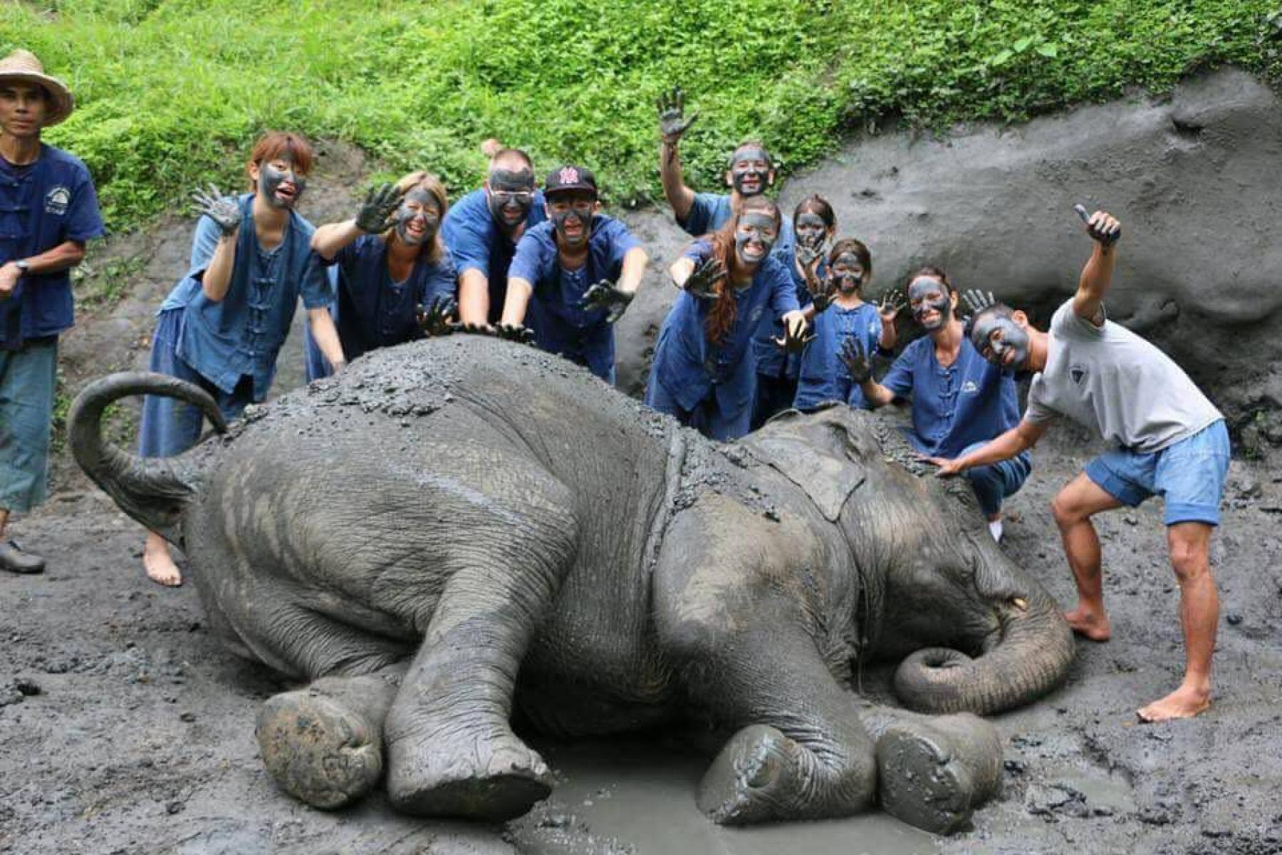 Elephant Black Mud Bath Spa starting at Chiang Mai Thailand