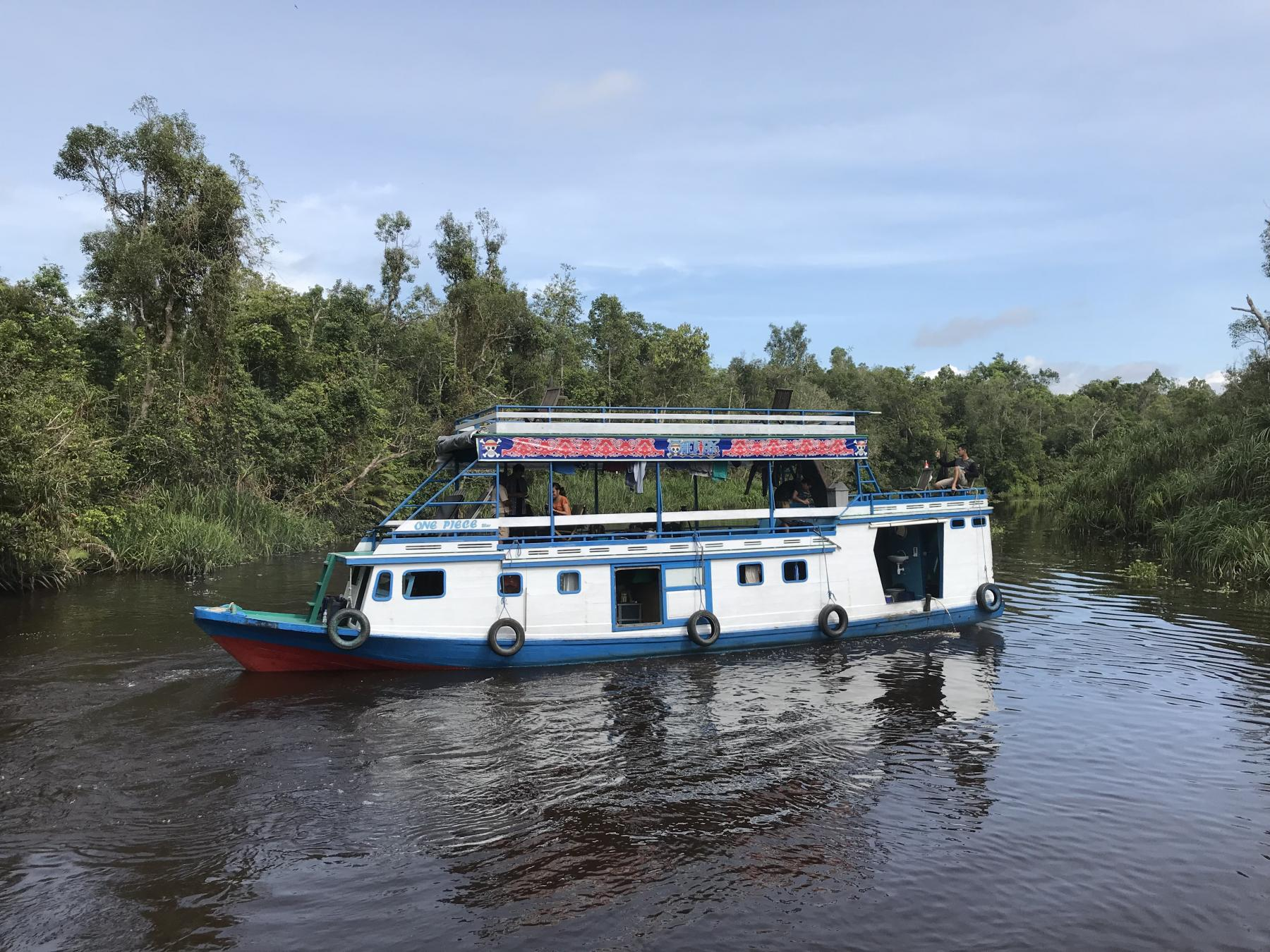 ORANGUTAN RIVER SAFARI - 3D3N Overnight on Kelotok Boat - Indonesia starting at Tanjung Puting National Park, Kumai Hulu, West Kotawaringin Regency, Central Kalimantan, Indonesia