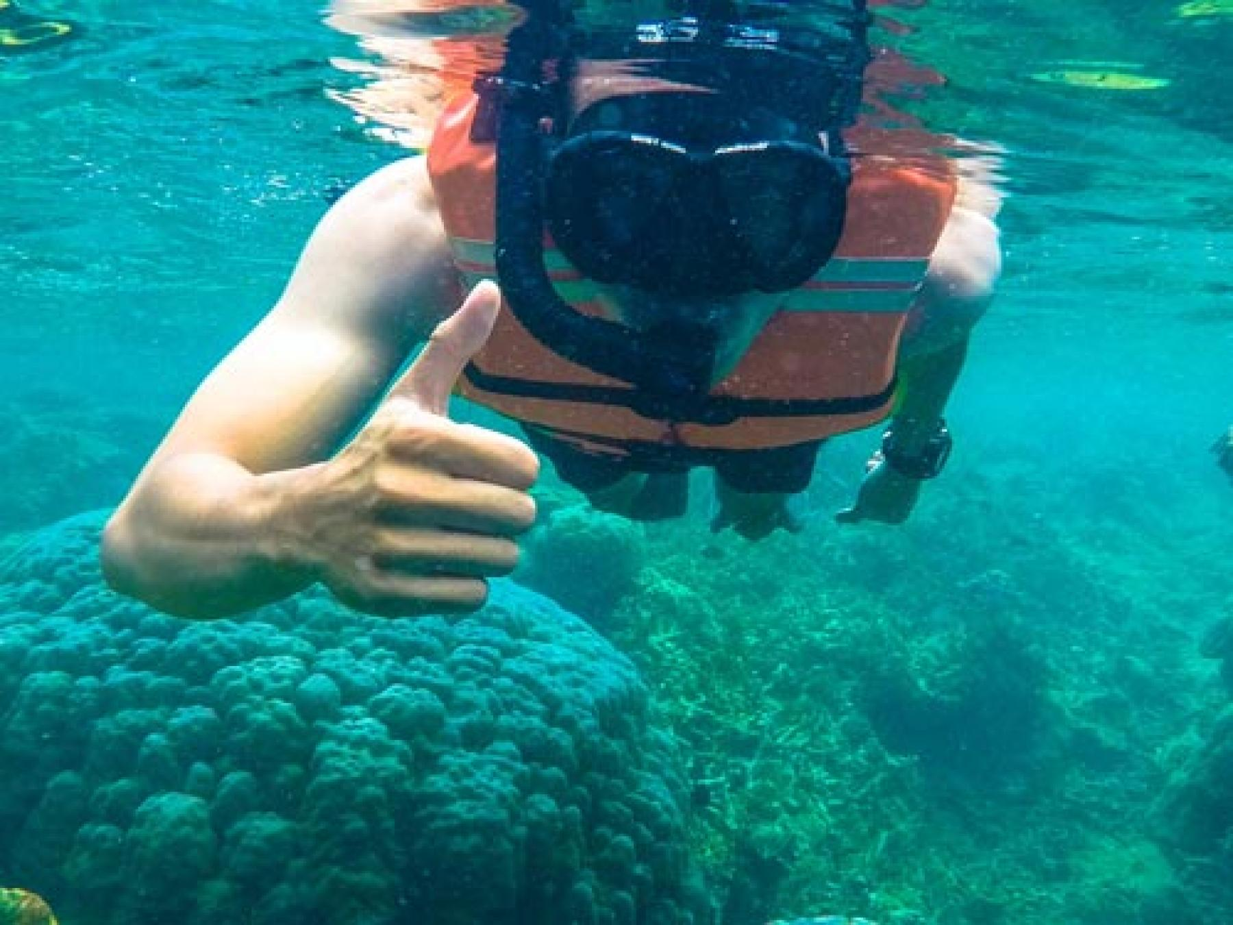 [CONFIRMED] Let's Go Snorkelling in Pulau Seribu (Learning+Sharing Session!) starting at Jakarta, Indonesia