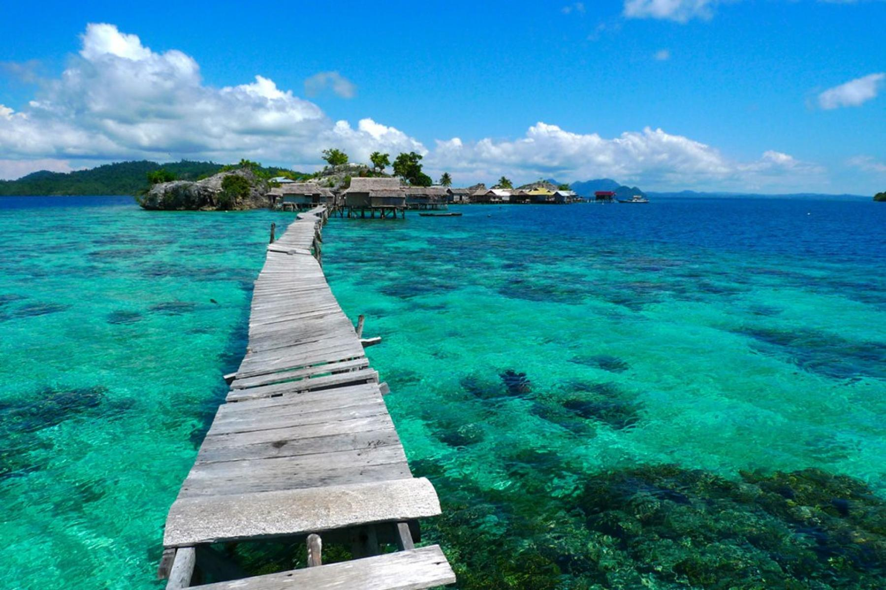 [7D6N] Gorontalo, Togean Islands & Lore Lindu National Park starting at Sulawesi Utara, Indonesia