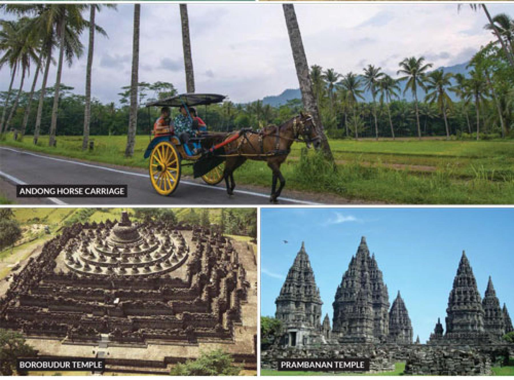[5D4N] Yogyakarta & Dieng Highland All-in-One : Nature, Historical and Cultural starting at Yogyakarta, Indonesia