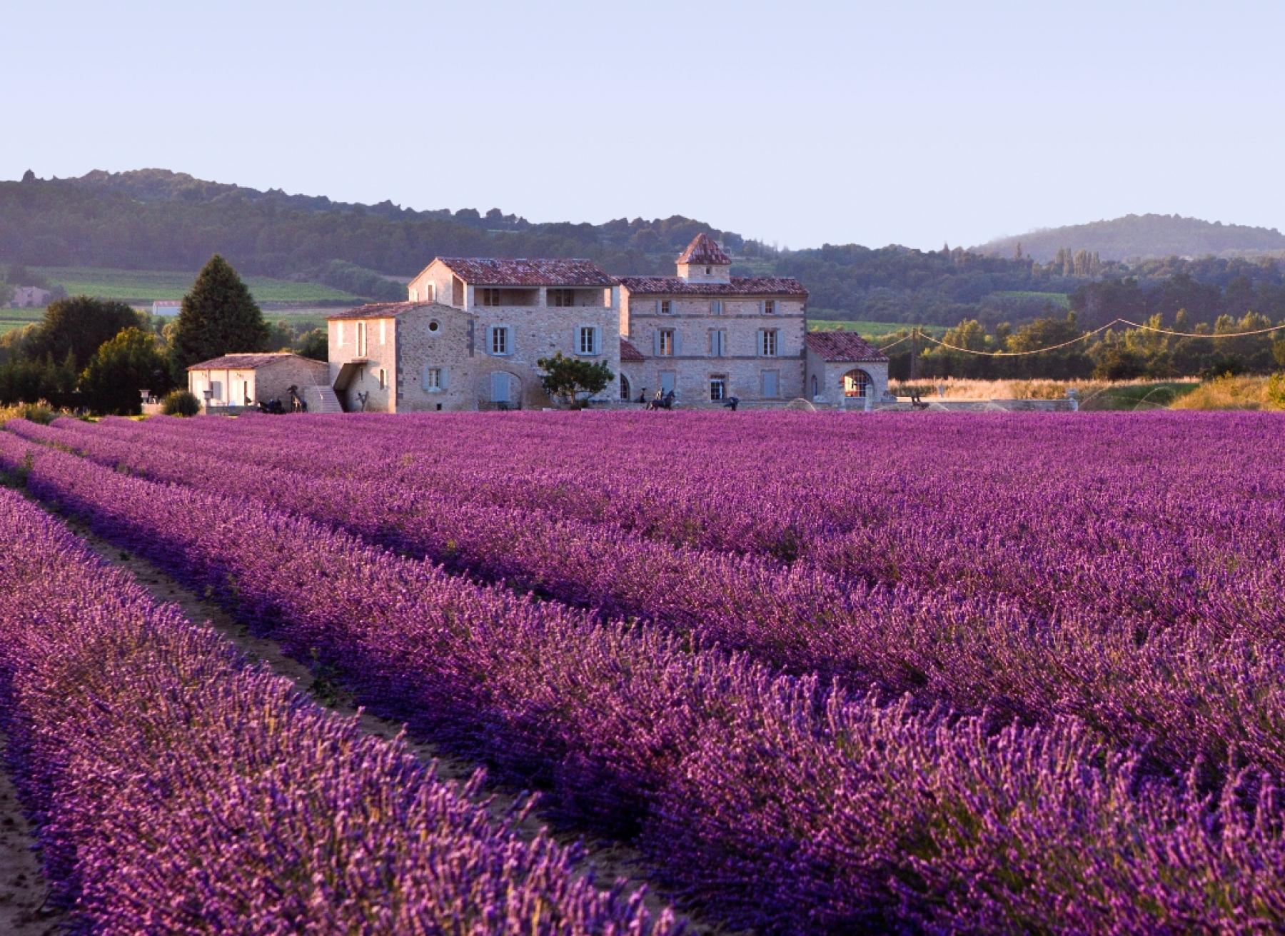 Live like a local in Provence and French Riviera : Art, Food, Charm, and Sea starting at Provence, France