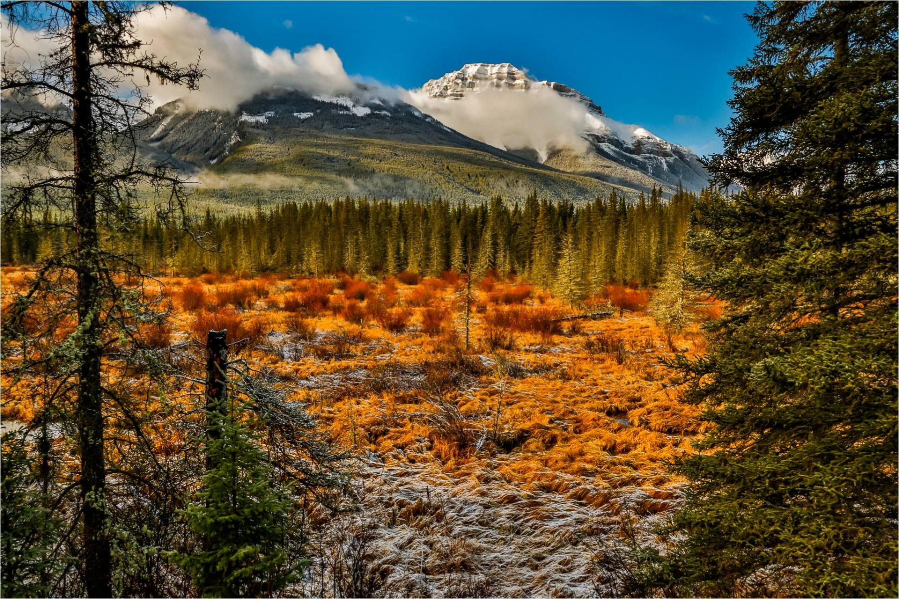 Amazing Colours of Canadian Rockies in Autumn starting at Calgary, AB, Canada