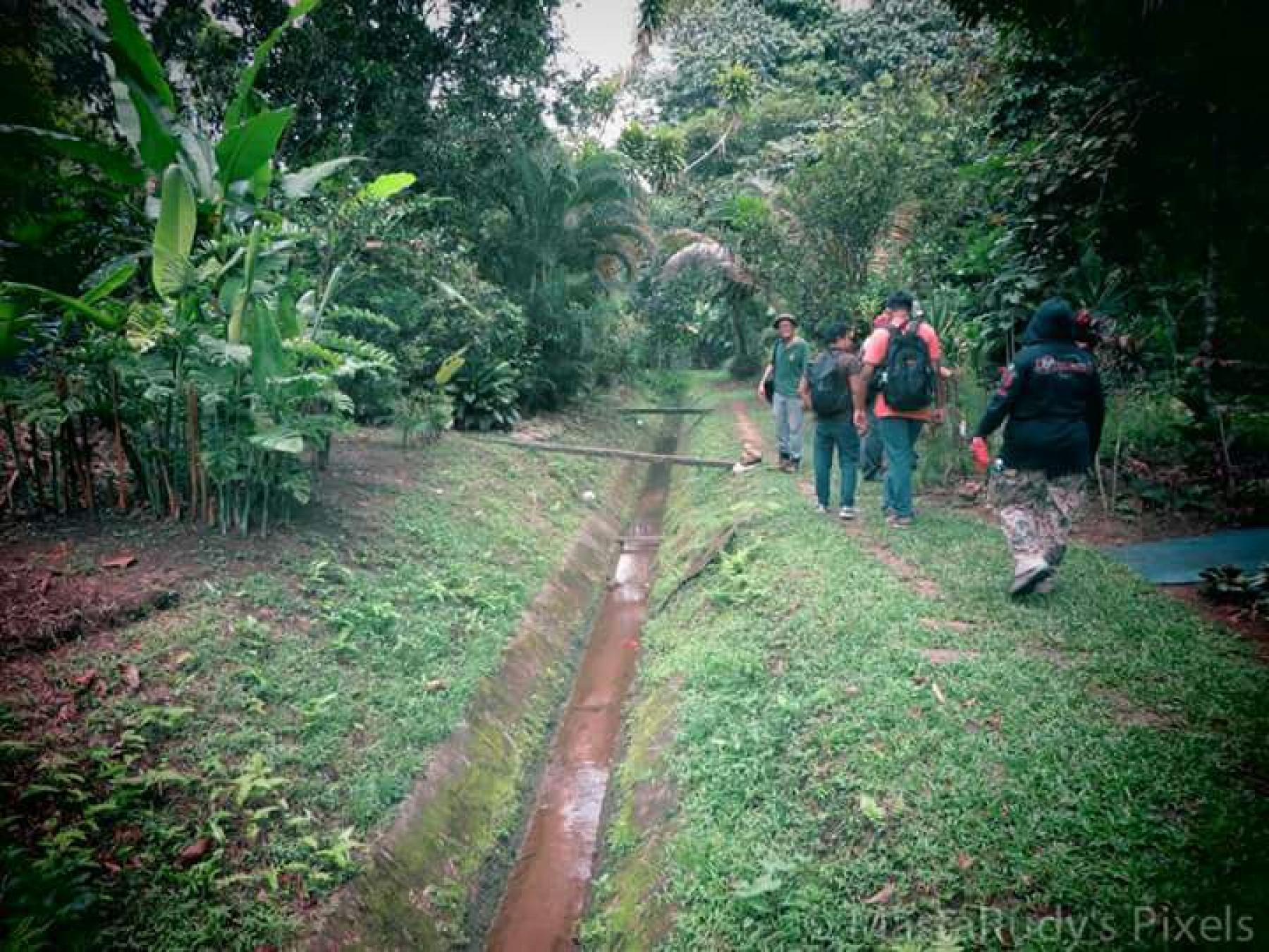 Let's discover vast and beautiful Bukit Brown on a jungle heritage walk starting at Bukit Brown Cemetery Singapore