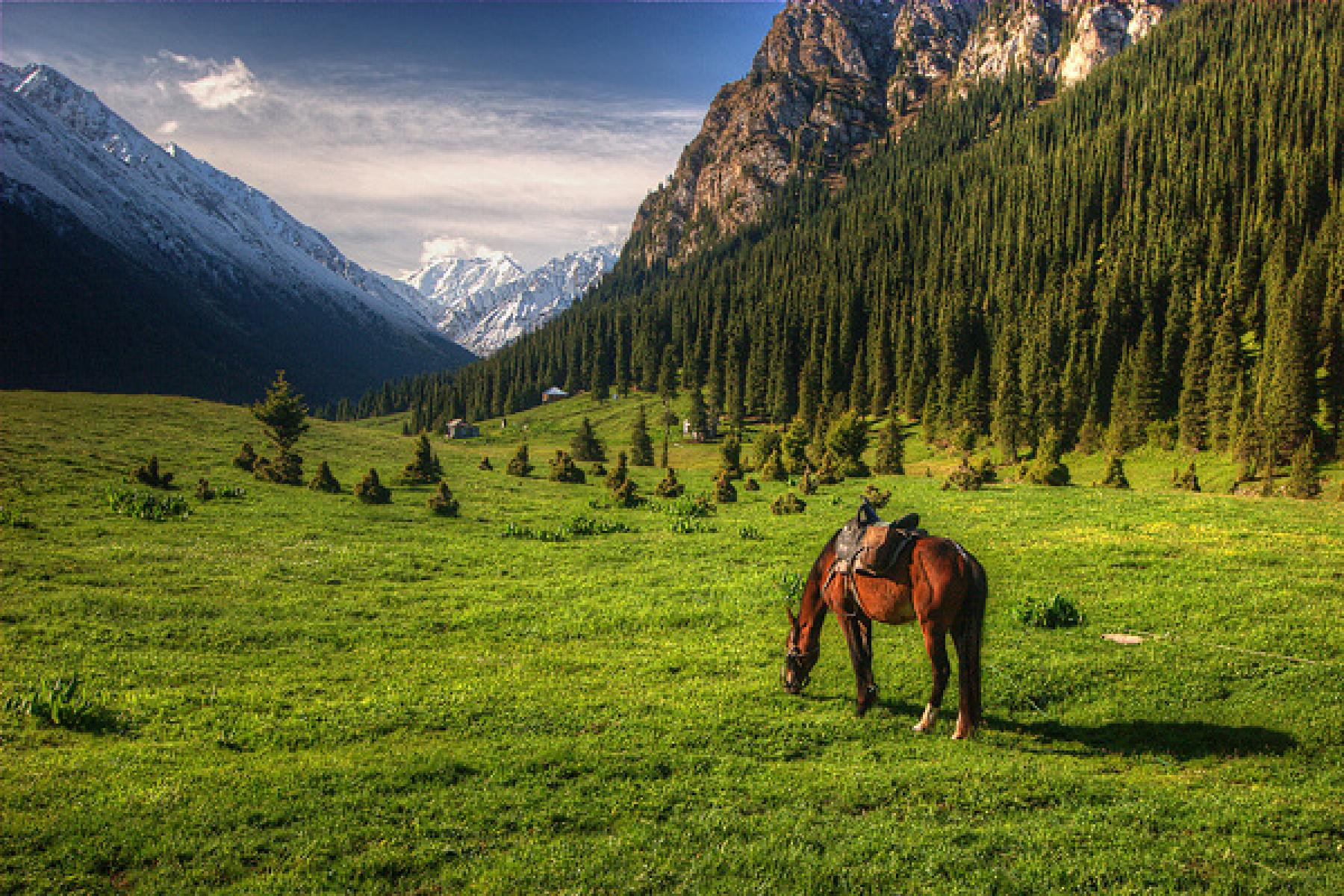 Let's experience the life of the silk roads nomads starting at Kyrgyzstan